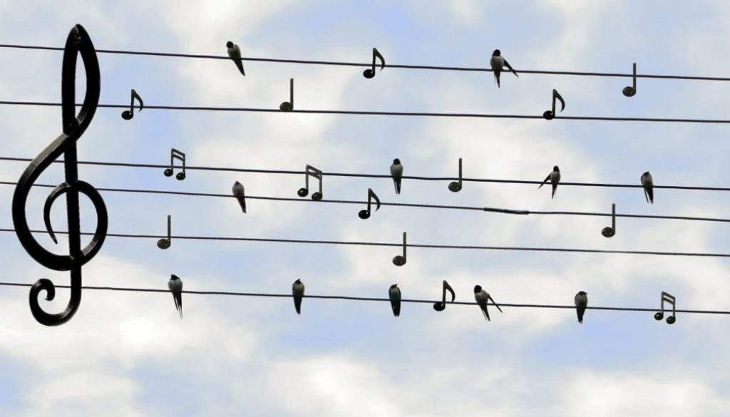 La Chorale AVIVO Genève