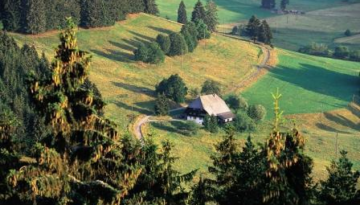 La Forêt Noire, du 1er au 4 octobre 2018 - Voyage AVIVO Genève