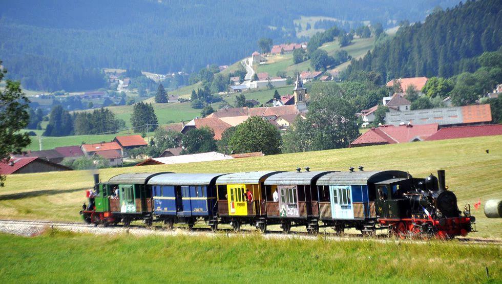 Le coni'fer, le 25 septembre 2018 - Sortie AVIVO Genève